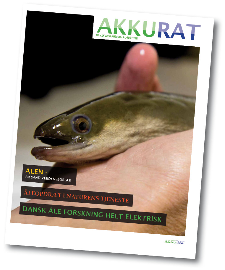 /-/media/Sites/PRO-EEL/dissemination/popular-scientific-publications/akkurat3.ashx