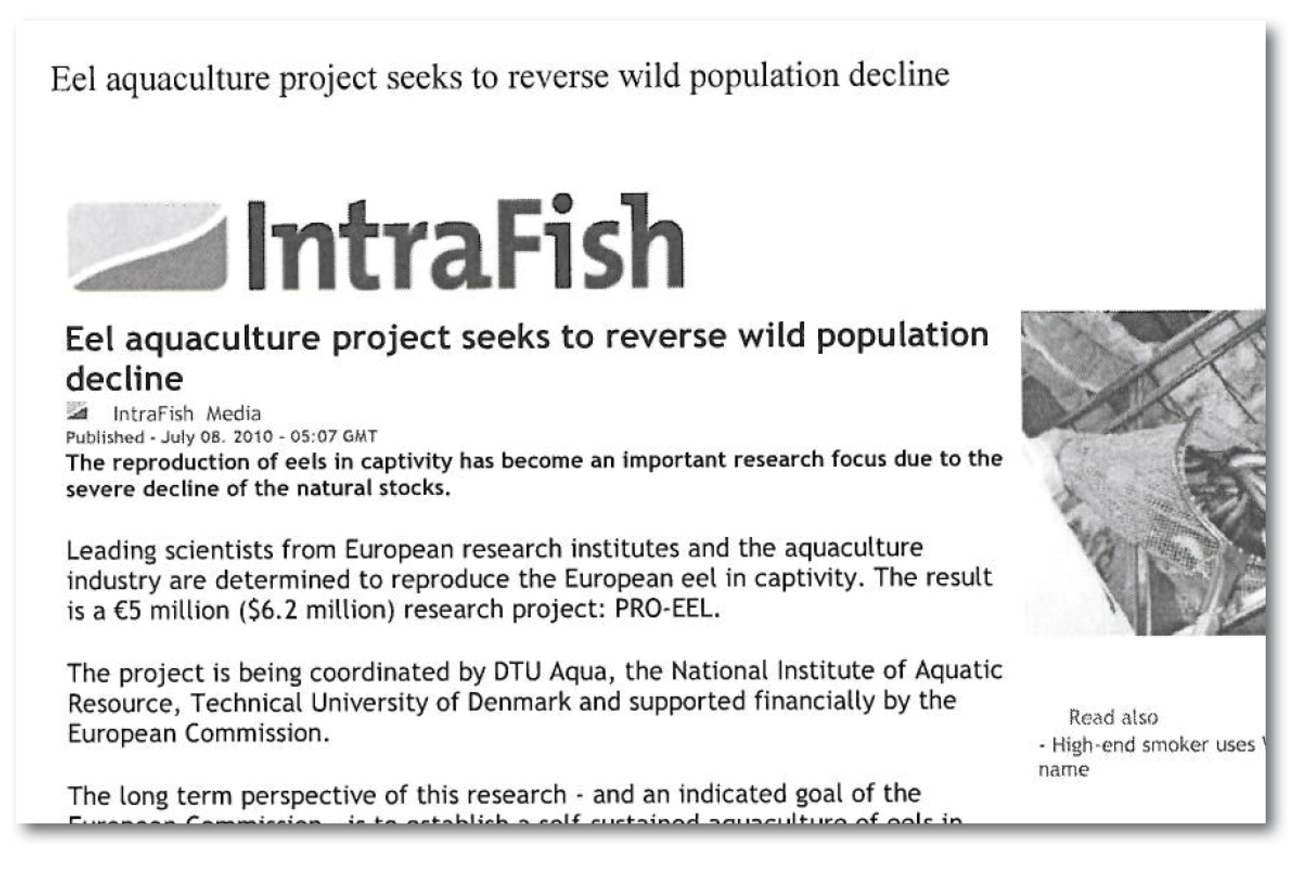 intrafish 08072010.jpg
